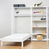 Shelves with Bed